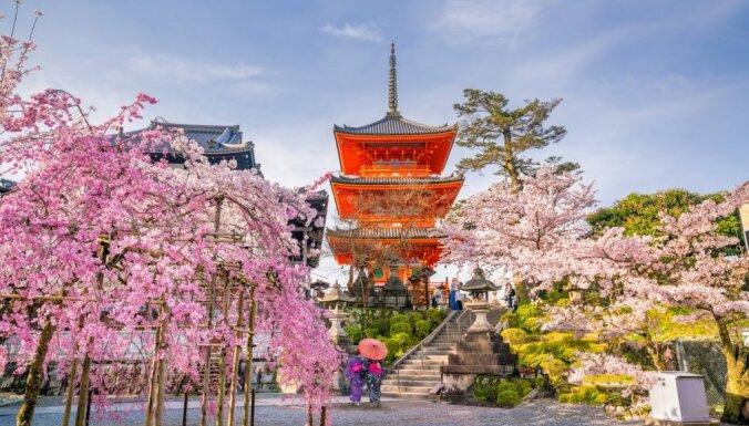 Japāņu meteorologi atvainojas par ķiršu ziedēšanas sākuma neprecīzu noteikšanu