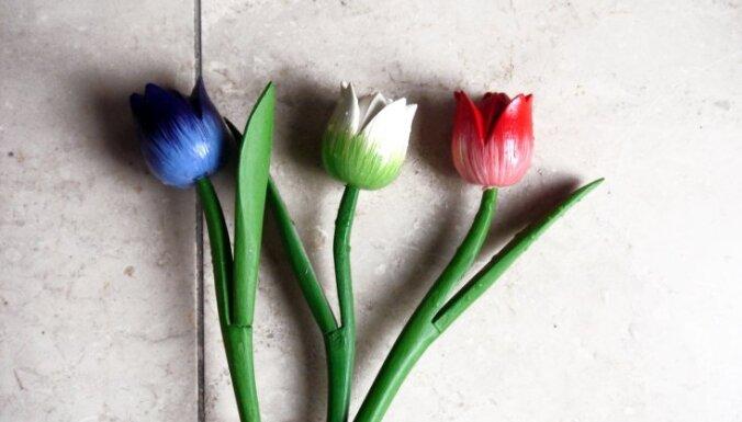 Pavasara 'viltotais remonts'