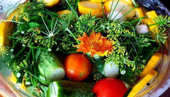 Dārzeņu asorti marinādē ātrai apēšanai