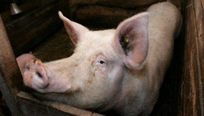ЕК: эмбарго России на ввоз скота противоречит правилам ВТО