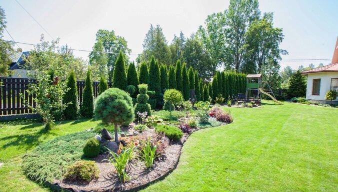 Foto: Sakoptākās sētas un skaistākie dārzi no 15 Latvijas novadiem