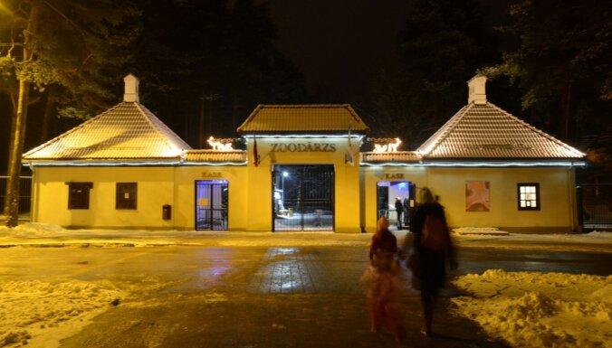 Uz Rīgas zoodārzu pērn atvesti 316 dzīvnieki, kuri kopumā pārstāv 62 sugas