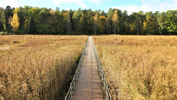 ФОТО. В Курземе появились четыре новые природные тропы, на которых можно отлично провести выходные