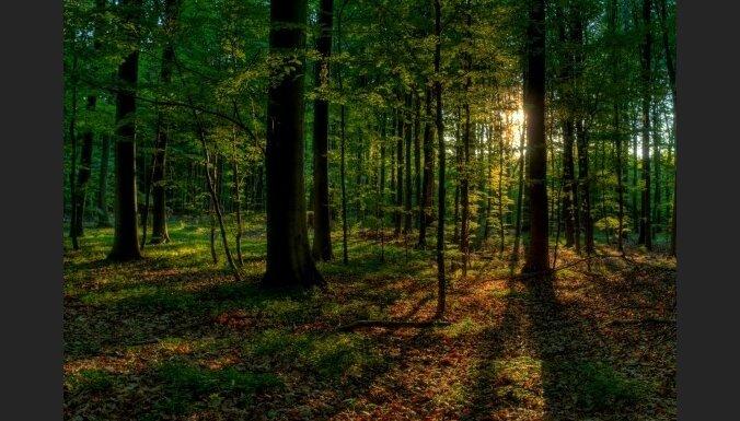 ANO cer šogad piesaistīt pasaules uzmanību bioloģiskajai daudzveidībai