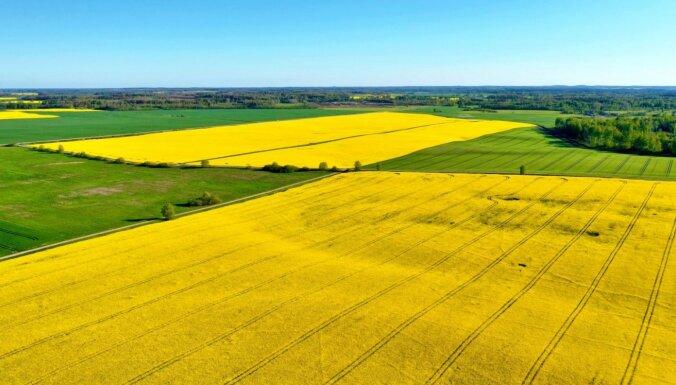 Latio: стоимость гектара сельскохозяйственной земли в Латвии - одна из самых низких в Европе