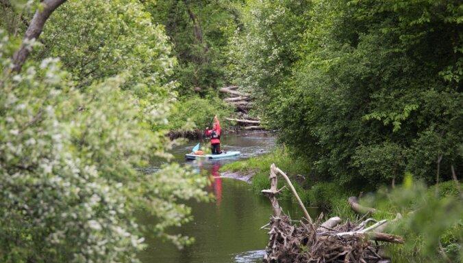 SUP maršruts pa Aģes upi, kas būs piemērots piedzīvojumu meklētājiem un avantūristiem