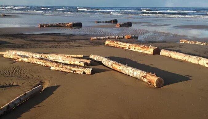 ФОТО: На морской берег выбросило десятки бревен; жители могут забирать их себе