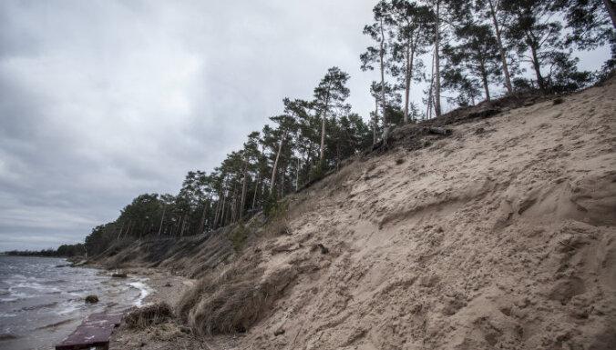 Общество защиты Юрмалы выступает против застройки леса у Белой дюны
