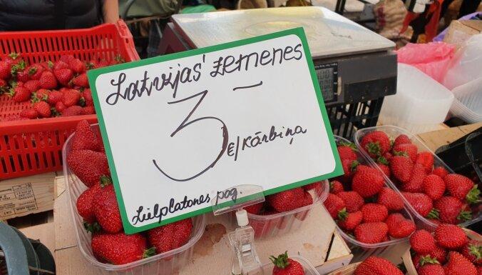 ФОТО: на Центральном рынке появилась первая в этом году латвийская клубника