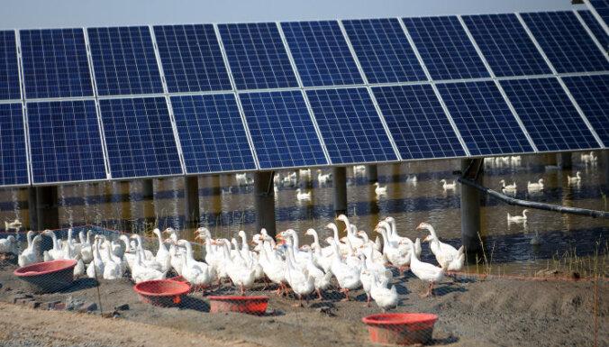 ЕК: главные задачи климатической политики Латвии — снижение потребления энергии в сферах транспорта и жилья