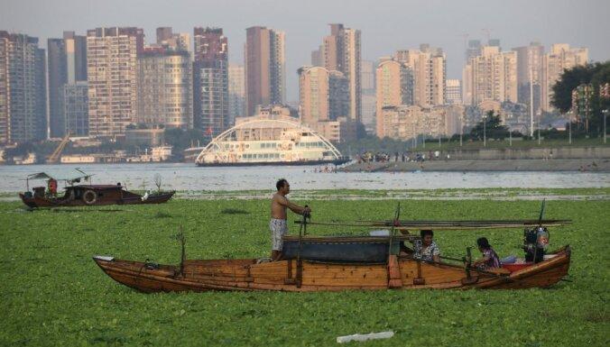 Китайский город целиком закрыли на карантин из-за чумы