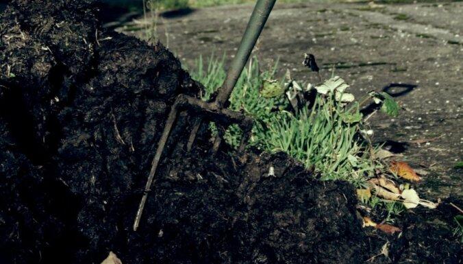 Kūdras substrāti - telpaugiem un dārzam