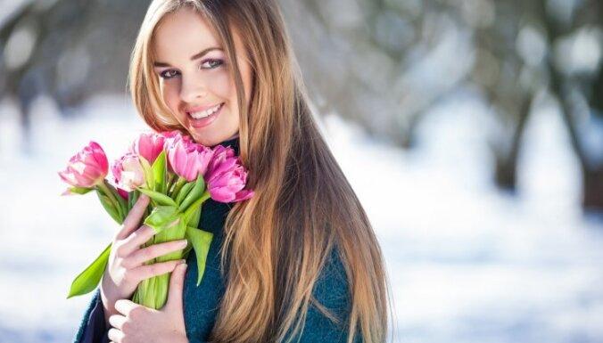 Растение месяца: тюльпан на подоконнике к 8 марта