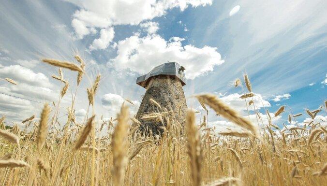 Мельницы, лошади и литовские усадьбы: В поместьях оживают сказки, услышанные в детстве