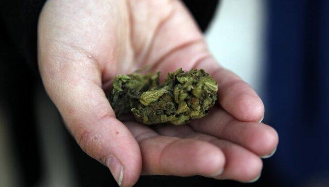 Ильгюциемс: в квартире выращивали марихуану, полиция изъяла оборудование