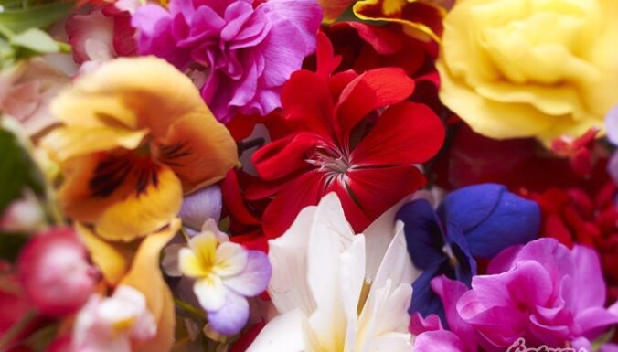 Торговцы: латвийцы все чаще заказывают цветы в интернете