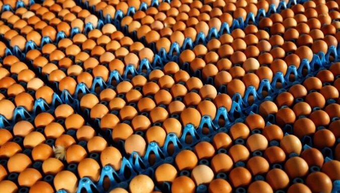 Balticovo: цена яиц упала, результаты у предприятия - не блестящие