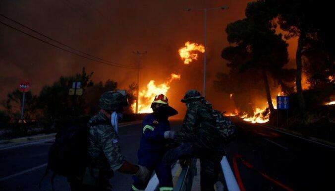 Число жертв лесных пожаров в пригородах Афин достигло 91