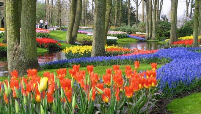 Pasaules lielākie un krāšņākie dārzi un parki - krāsas, smaržas, ornamenti un skulptūras