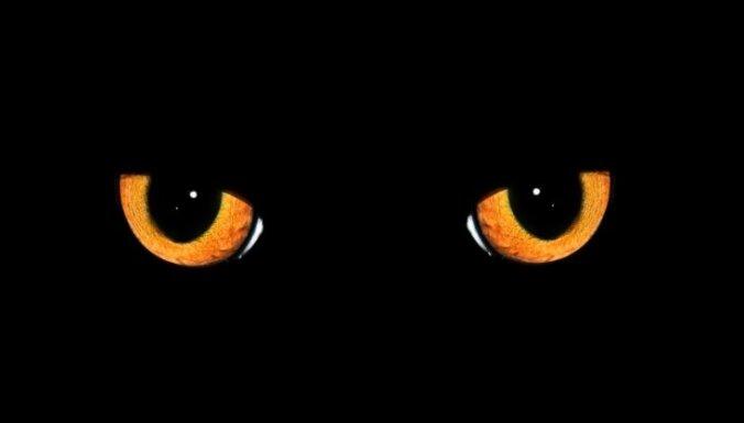 melns kaķis, maģija, mistika, māņticība