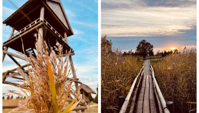 ФОТО. Как на открытке: Осенняя тропа сквозь тростник на озере Каниерис