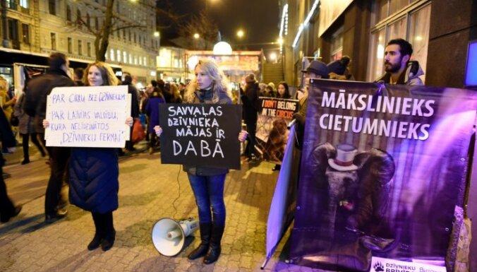 В Риге прошла акция против использования животных в цирке