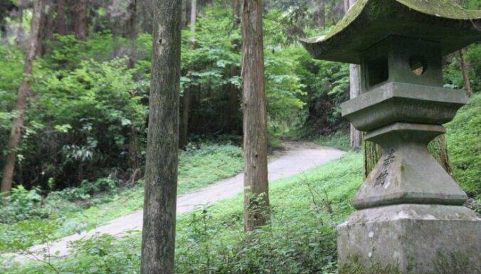 Svētnīca kā no Āzijas pasaku grāmatām sena meža biezoknī