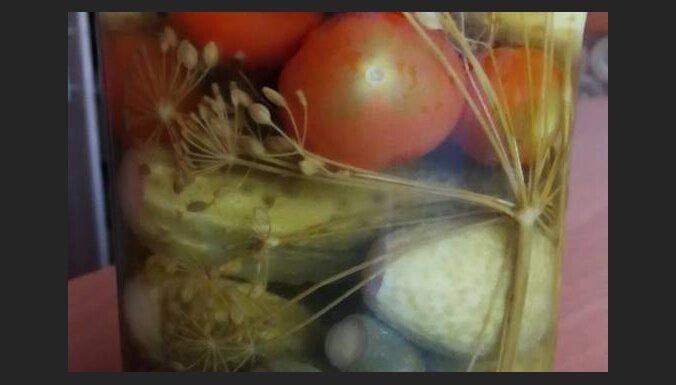 Хрустящие огурчики в душистых травах: три рецепта от мамы