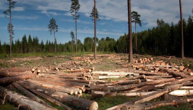 ООН нужен $1 трлн. на охрану окружающей среды