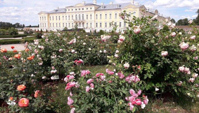 Календарь садовых праздников: где в этом году можно полюбоваться пышным цветением
