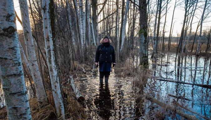 Izbrist starp ezeriem – ideja brīvdienu pārgājienam Limbažu pusē