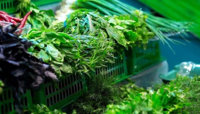 Ацхан: салат из листовой зелени