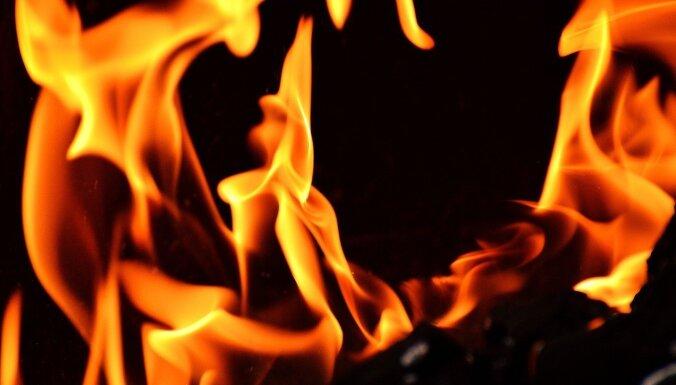 ФОТО: на шоссе Таллинн-Пярну загорелся автовоз, перевозивший машины Toyota и один люксовый Lexus