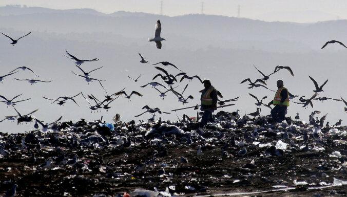 РД предложила действующим в столице предприятиям по вывозу отходов продолжить работу в Риге