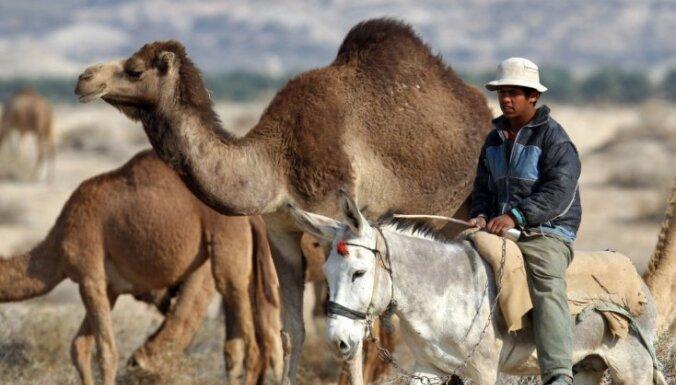 В Египте боевики захватили курорт и требуют выкупа