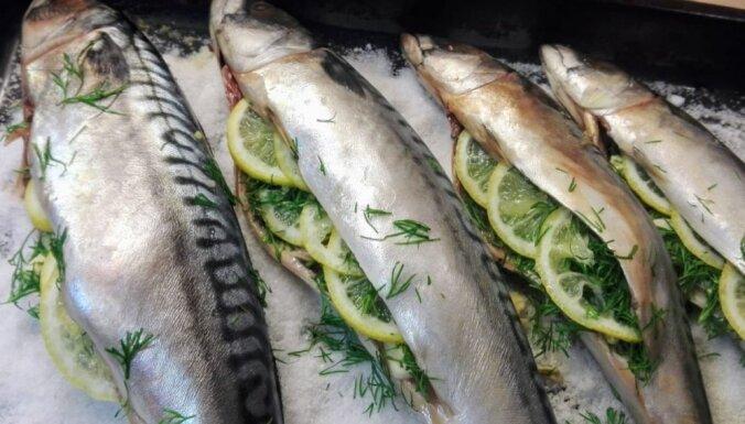 Sālī ceptas makreles jeb skumbrijas