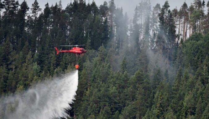 Германия обещает помощь Греции, Швеции и Латвии в тушении лесных пожаров