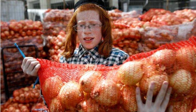 ANO pārtikas aģentūra aicina ar agroekoloģiju cīnīties pret badu