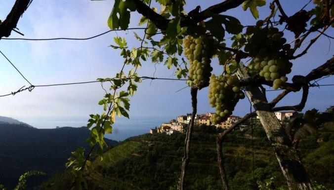 Землетрясение магнитудой 4,9 произошло на юге Италии