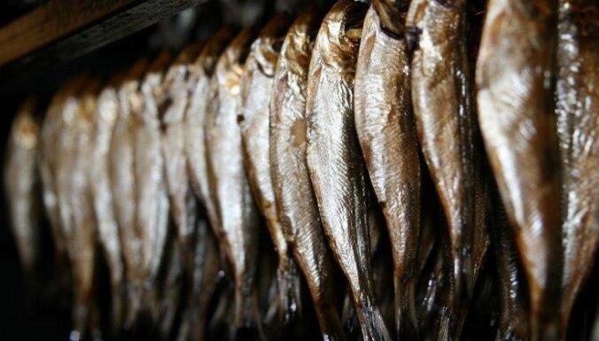 Ēģiptē tirgo Latvijas auzas un zivis; tirgotājus interesē arī graudaugu produkti