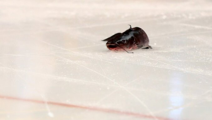 dead catfish on the ice Stanley Cup final