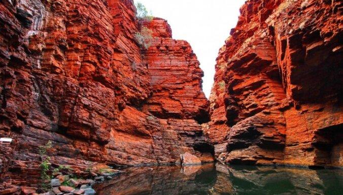 Kanjonu ielenkumā: brīnumainais Karidžīnī parks Austrālijā