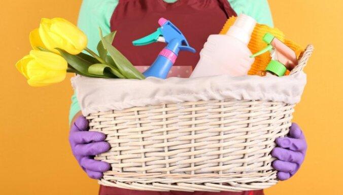 Чисто и недорого: как сэкономить на средствах для уборки