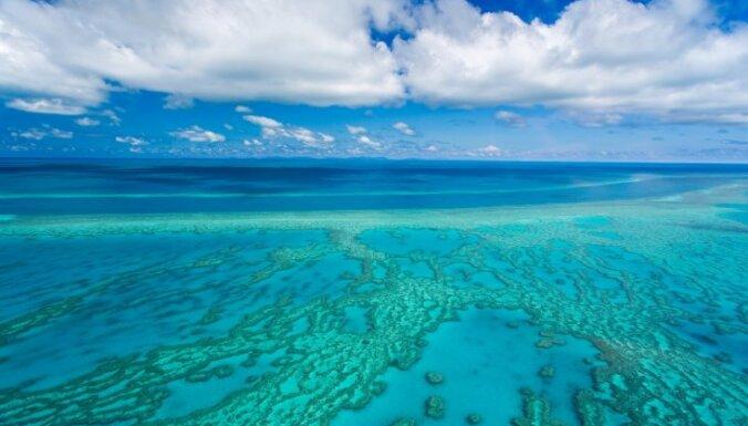 Lielākā koraļļu rifu sistēma pasaulē – Lielais Barjerrifs