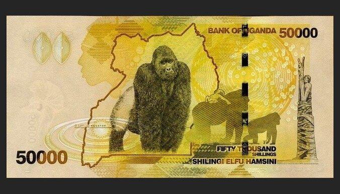 Искусство от купюр: Топ-10 самых красивых в мире банкнот