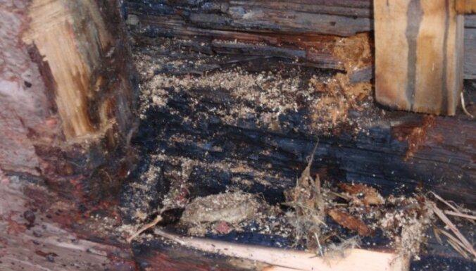 На пепелище в Риге нашли сильно обгоревший труп