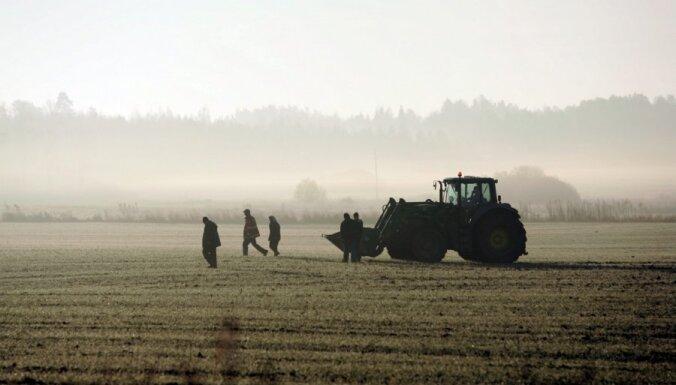Izsalušo ziemāju dēļ Eiropas Komisijai lūgs sniegt atbalstu Latvijas graudkopjiem