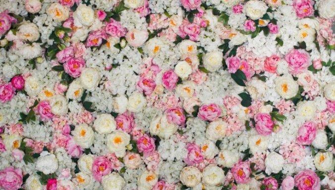 Kāzu dekoru aktualitāte: ziedu siena kā fotostūrīša fons