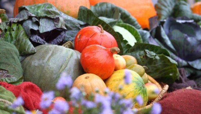 В Этнографическом музее состоится праздник осеннего урожая