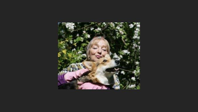"""Seriālā """"Zelta Zivtiņa"""" viena no lomām atvēlēta Lielbritānijas karalienes Elizabetes tik iecienītajam Velsas korgija-pembroka šķirnes sunim. Publicitātes foto."""